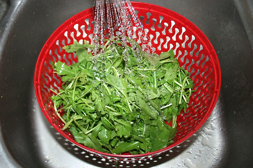 18 - Rucola waschen / Wash rucola