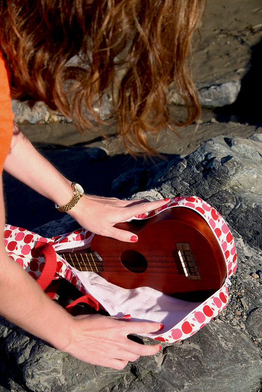 ukulele case3