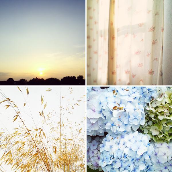 A few summer Instagram's - follow me as emmlamb.uk | Emma Lamb