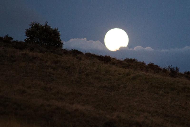 Super Luna (2)