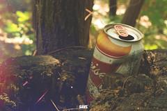 45/365 - Summer