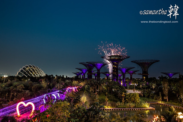 Gardens by The Bay (滨海湾花园)