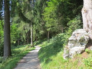 1232 Wanderbild