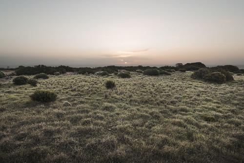 sunset nikon southaustralia halletcove coastallandscape laszlobilki