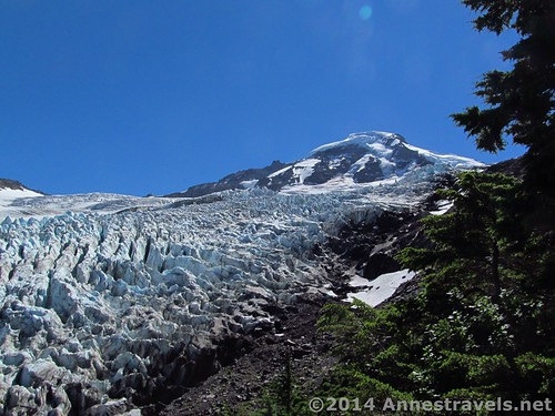 Mount Baker and the Heliotrope Glacier from the