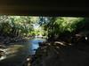 CreekAugust13-2014  :   DSCN2800