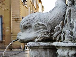 Fontaine des 4dauphins(détail) - Aix en Provence