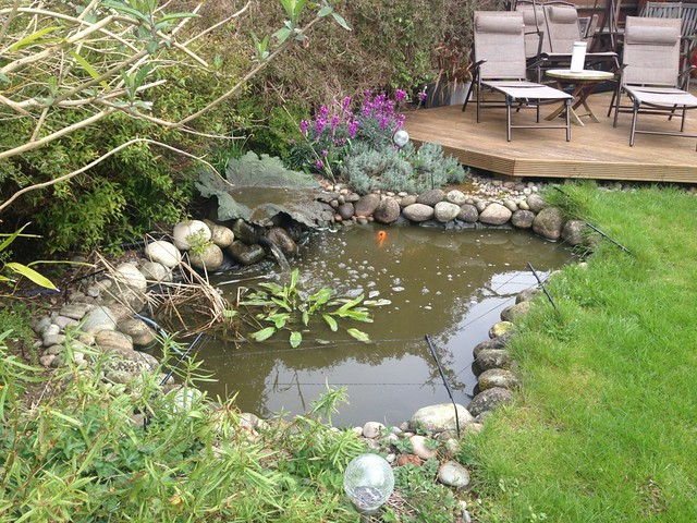Sorry yet more advice needed turf edging pond design for Garden pond edging