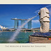 The Merlion Sngapore by williamcho
