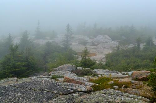 Cadillac Mountain Mist, Acadia National Park
