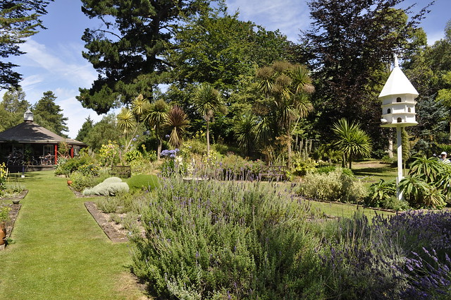 2014-07-16 Jersey lavender farm