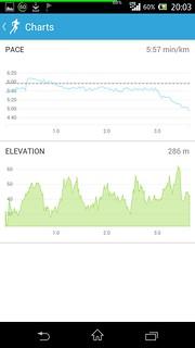 20140913_RunKeeper(Running)charts