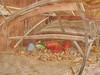 Sand Toys, Autumn Leaves beneath Empty Benches - Tuberculosis Sanatorium, Mirror Ground ~ Sandspielzeug, Herbstlaub unter Bankerln. Spiegel Grund Pavillon Annenheim Lungenheilanstalt Steinhof by hedbavny