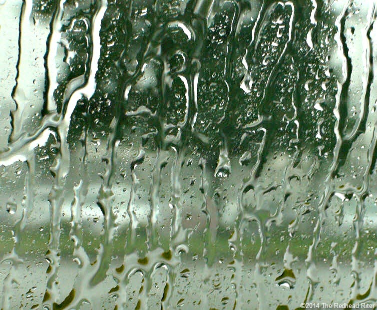 raindrops dripping on window with tree outsdie Pluviophile