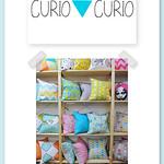 Curio & Curio