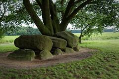 Pays Bas - Hunebed - Drenthe