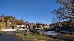 Aldbury vllage pond