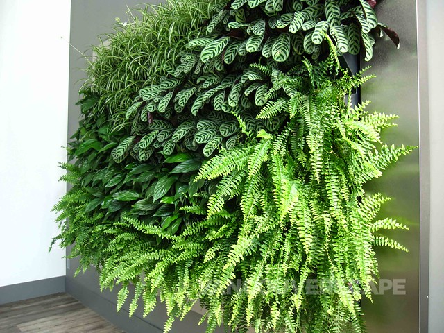 By Nature Design living wall-1
