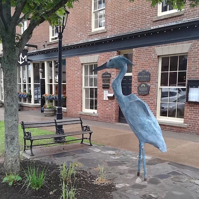 Blue heron sculpture,  Queen and Water #princeedwardisland #pei #charlottetown #queenstreet #waterstreet #blueheron #heron #publicart #sculpture #ahmonkatz #birds
