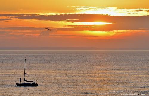 sunset sailboat golden sailing niagara charlesdaleypark rexmontalbanphotography