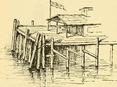 """Image from page 329 of """"The Pine-tree coast"""" (1891)"""