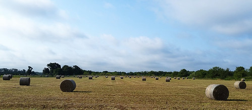 sky field clouds outdoors farm farming lawn hay bales bundle bale haybales bundles