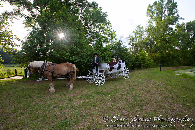 Misti & Caleb Waleska farm wedding