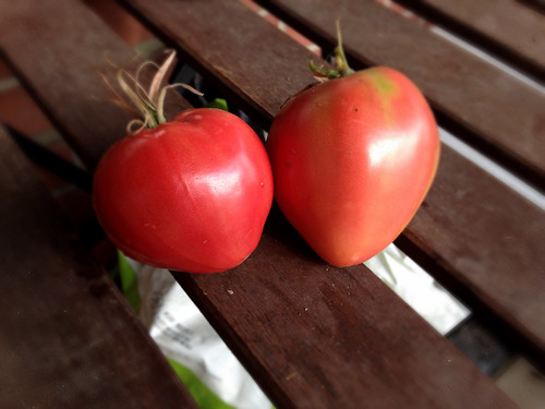German red strawberry tomatoes