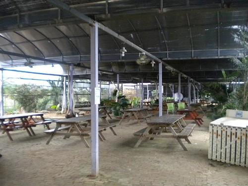 桃園觀音好玩的向陽農場 (12)