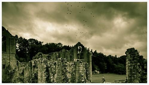 old sky abbey ancient nikon eerie creepy monks fountainsabbey cistercian nikond3200 d3200