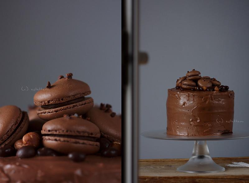 chocolate-hazelnut cake