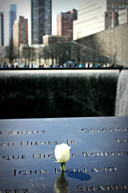 WTC-muistomerkillä ruusu