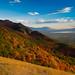 autumn hillside by Sam Scholes
