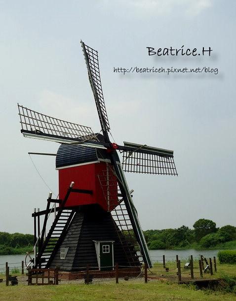 荷蘭村。風車