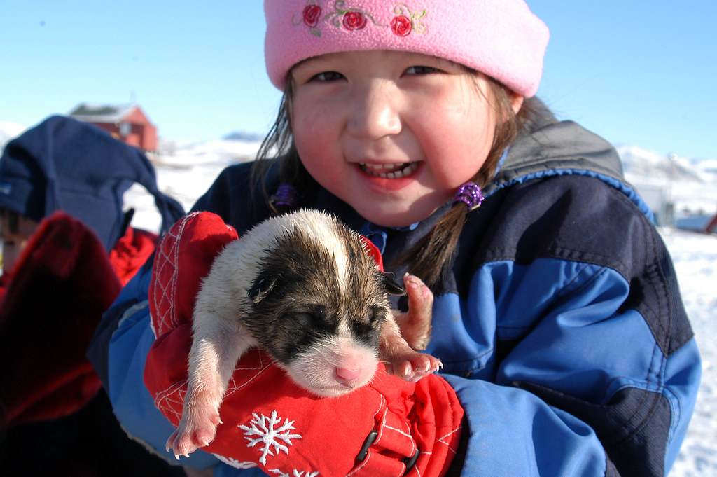 Image result for inuit children