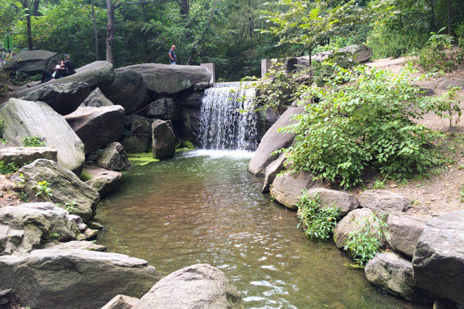 Central Park 3.jpg