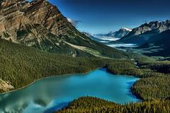 PeytoLake, Banff Alberta