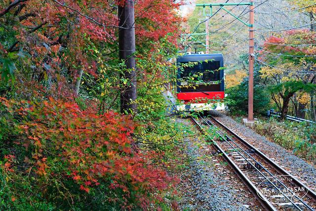 Hakone Tozan Cablecar, Sounzan to Gora, Kanagawa, Japan