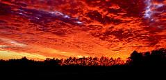 Low Light (Sunrise-Sunset)