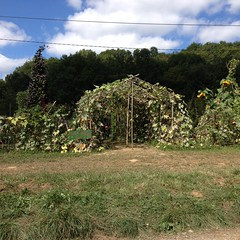 Gourd Greenhouse in the Cote Jardin - Photo of Le Cabanial