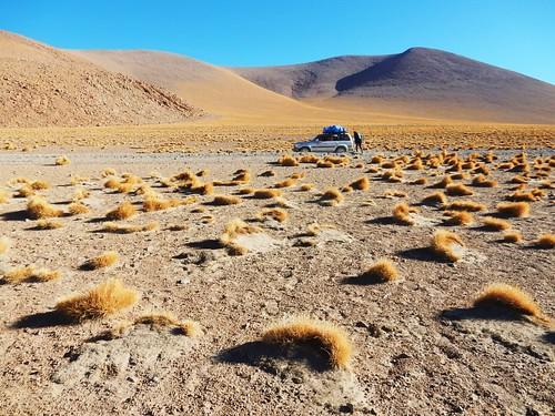 Wilderness - Eduardo Avaroa National Reserve - Bolivia