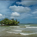 Island.  Weligama by Claire Pismont