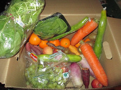 20160320 - Hungry Harvest delivery - IMG_0674