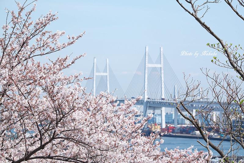 港の見える丘公園 by Nakabo