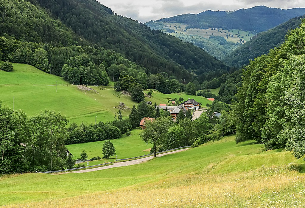 Southern Black Forest (Schwarzwald) near Praeg.