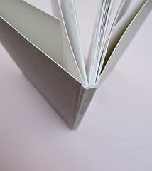 Ortografia della neve, di Francesco Balsamo. incertieditori 2010. Progetto grafico di officina delle immagini. Quarta di copertina, dorso, cop. e taglio superiore (part.), 1