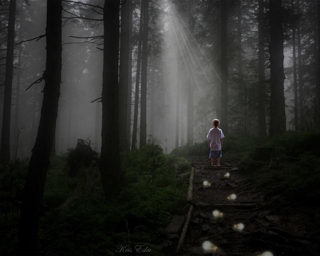 Path of H O P E