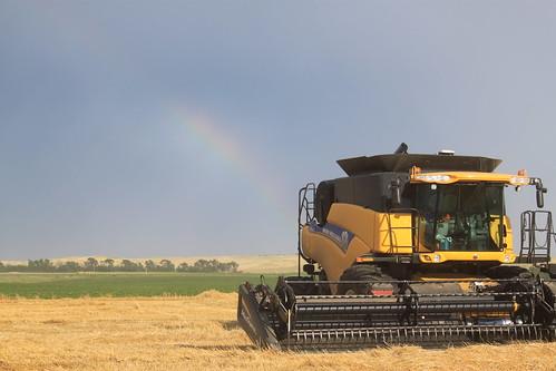 A little rainbow action.