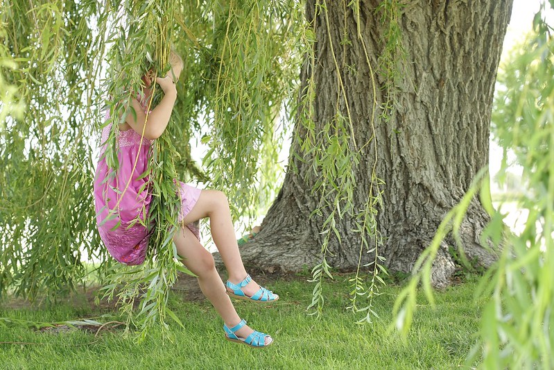 C swinging on willow branches