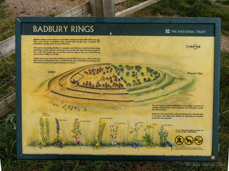 A visit to Badbury Rings